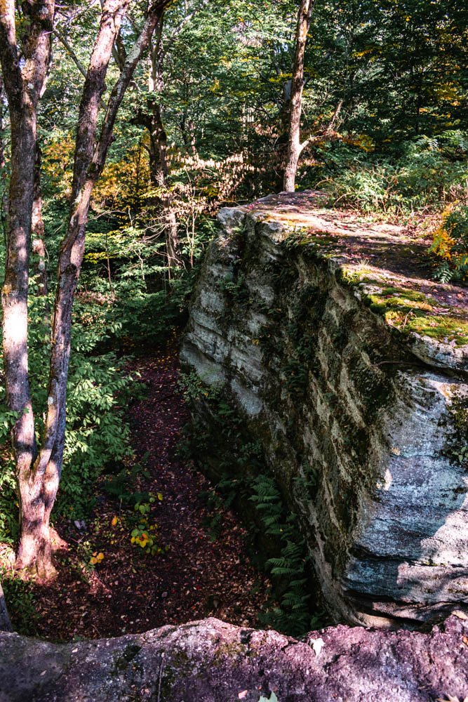 Rock City State Forest NY