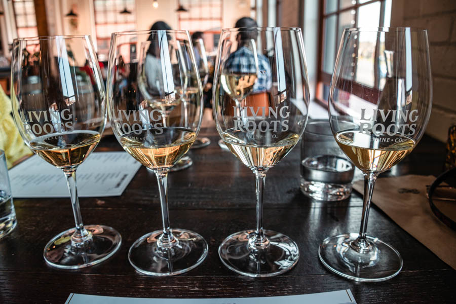 Wine Flights at Living Roots Winery - Best things to do in Rochester NY