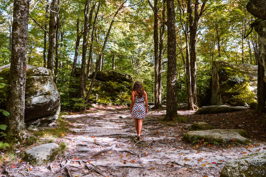 Allegany State Park in New York - Best Buffalo Day Trip