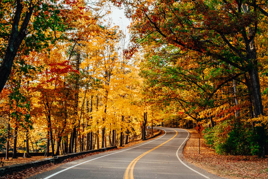 Road through Letchworth State Park in Fall