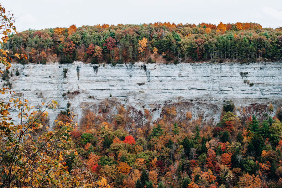 Fall Foliage at Letchworth State Park