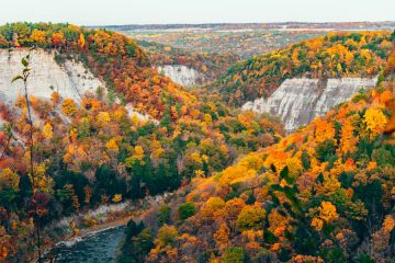 Fall Foliage in the Finger Lakes